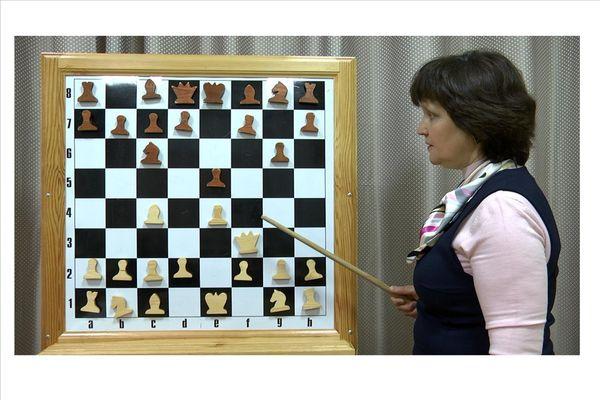 В Башкирии организованы шахматные онлайн-курсы для школьников