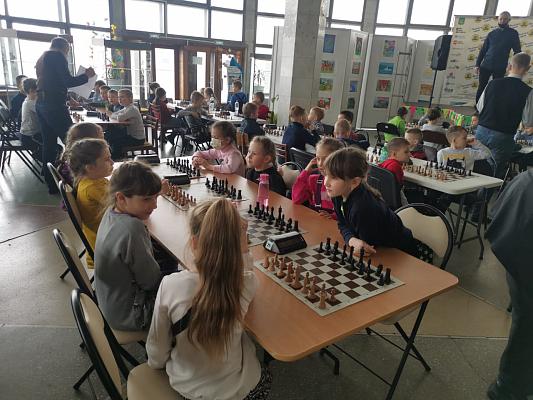 Шахматисты Приморского края сразились в турнире, посвященному Дню защитника Отечества