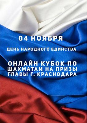 В Краснодаре провели онлайн-турнир на призы главы города